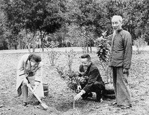 Khai thác và bảo vệ tài nguyên thiên nhiên theo tư tưởng Hồ Chí Minh