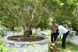 Phó Thủ tướng Thường trực Chính phủ Trương Hòa Bình viếng mộ cụ Phó bảng Nguyễn Sinh Sắc