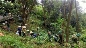 Phối hợp tổ chức phát quang, thu gom thực bì thực hiện công tác Phòng chống cháy nổ tại Khu di tích Kim Liên