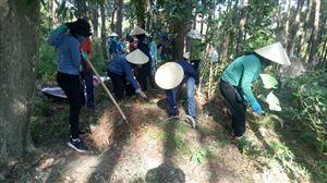 Khu di tích Kim Liên tổ chức thu gom thực bì đảm bảo công tác phòng chống cháy rừng tại Khu mộ bà Hoàng Thị Loan