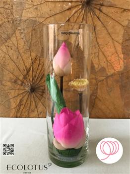 Sản phẩm Ly trụ hoa sen thủy tinh